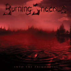 Into the Primordial